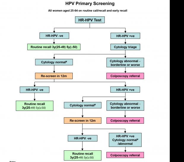 Tot ce trebuie sa stii despre HPV: Simptome & Tratament Human papillomavirus nhs choices