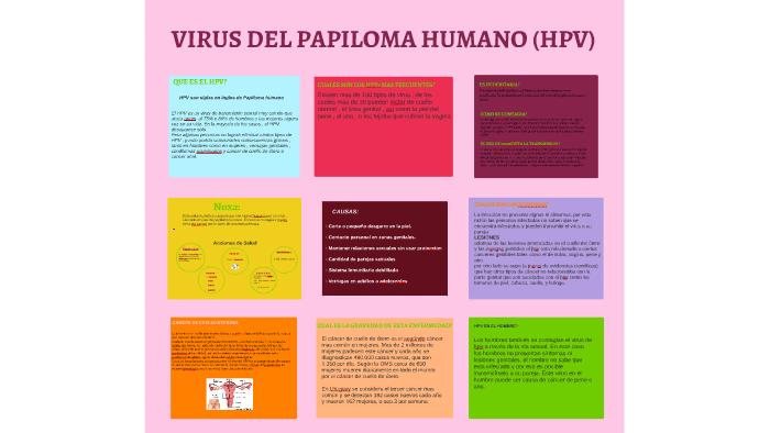 virus del papiloma noxa