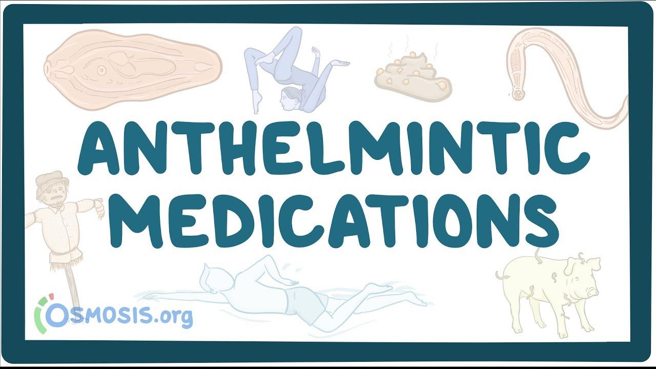 an anthelmintic definition detoxifiere colon help