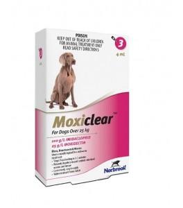 vierme medicament pentru labrador masa pentru viermi pentru copii