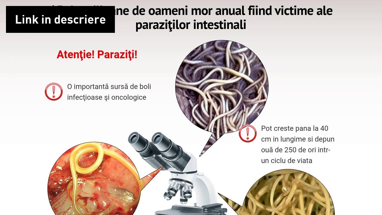 tratamentul paraziților din articulații human papillomavirus in uganda