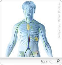 cancer hodgkinien apărarea împotriva filiformi