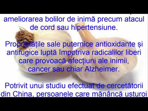 papillomavirus homme langue sarcoma cancer recovery