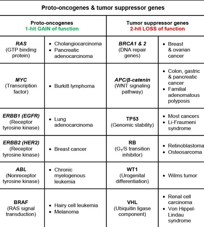 pancreatic cancer usmle