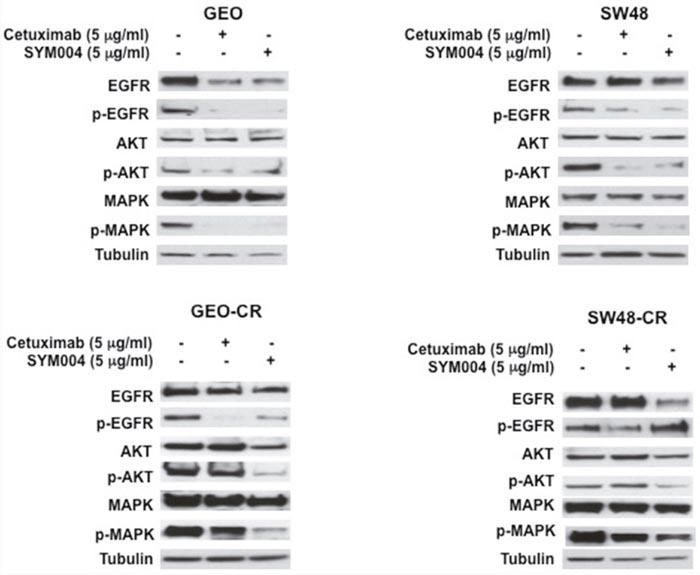 cancer being genetic produse derivate din paraziți pentru curățarea corpului
