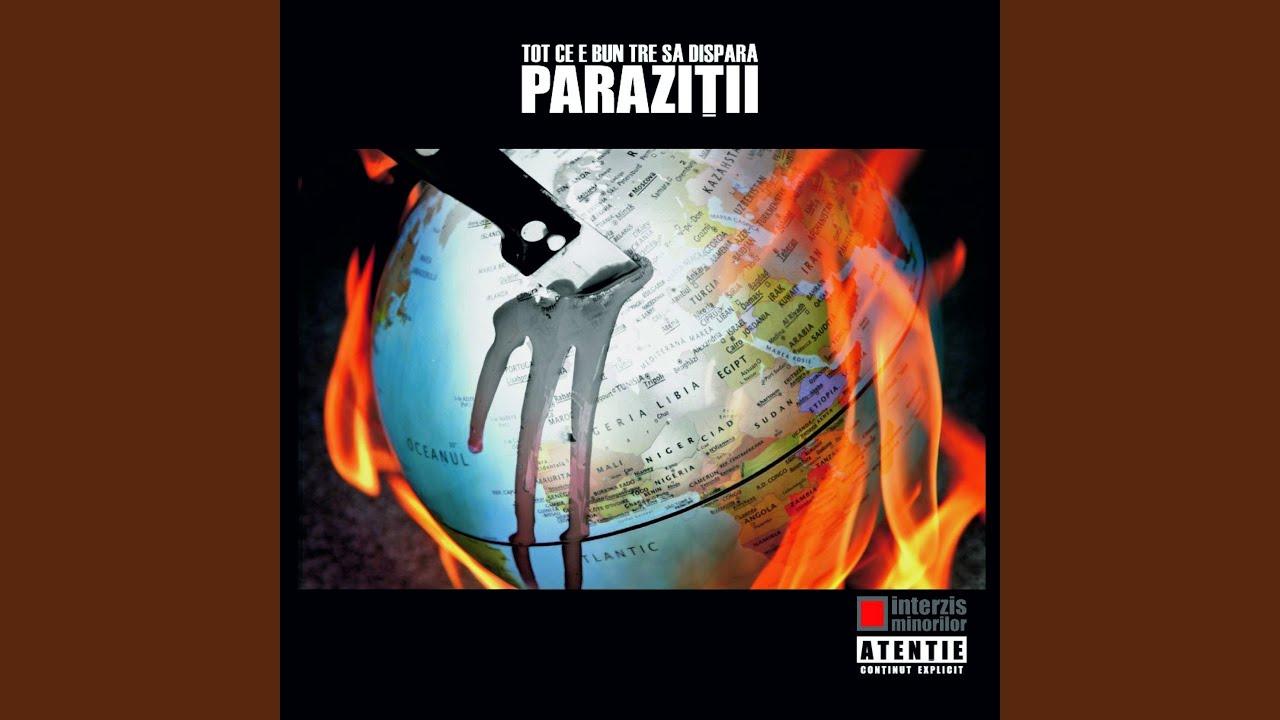 Paraziții - Parol versuri - RO