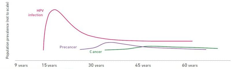 Hpv 16 virus symptoms. Tot ce trebuie sa stii despre HPV: Simptome & Tratament
