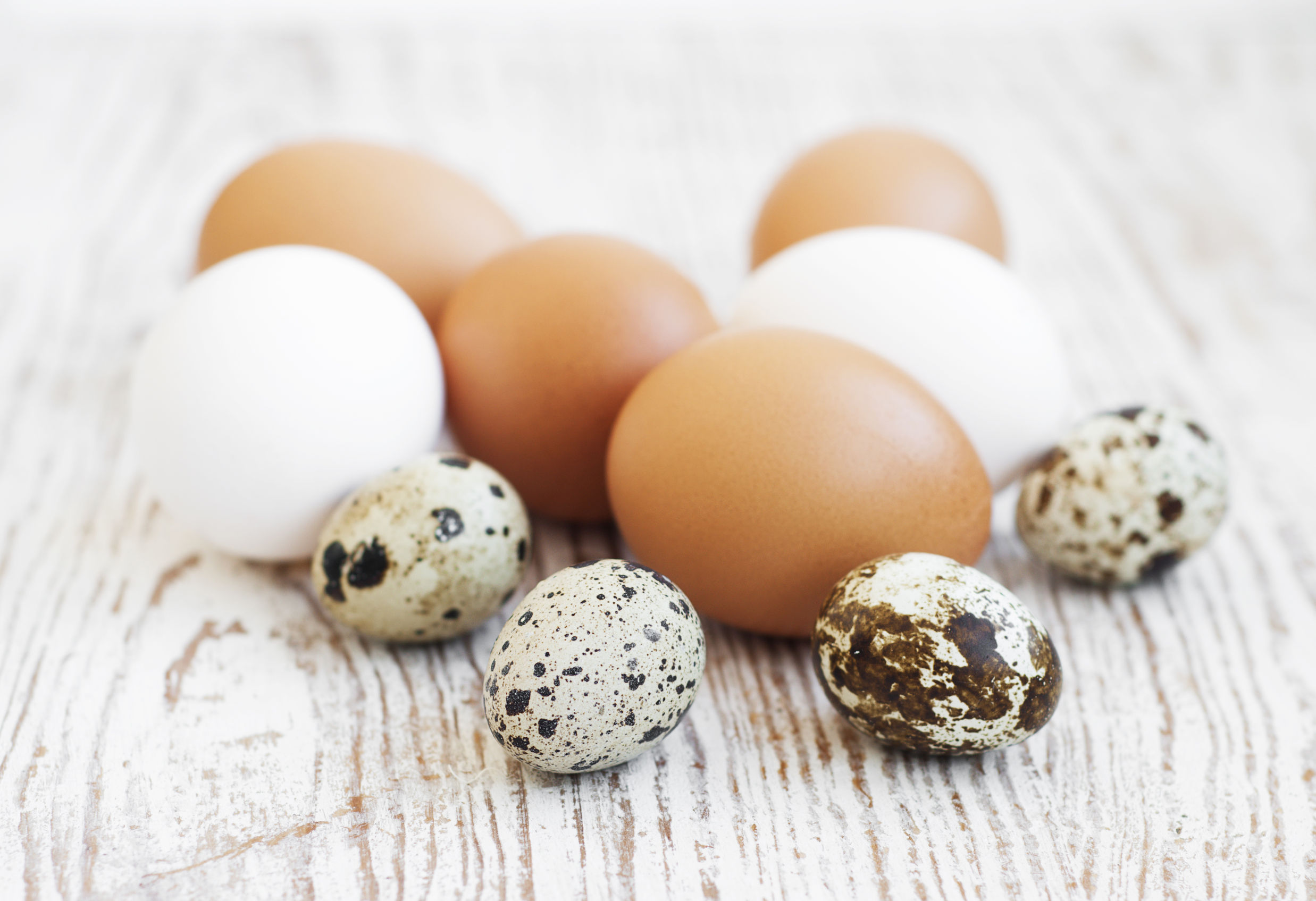 cum să ouă ouă