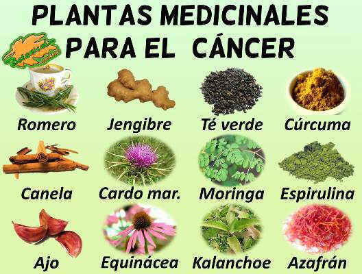 cancer de prostata tratamiento natural