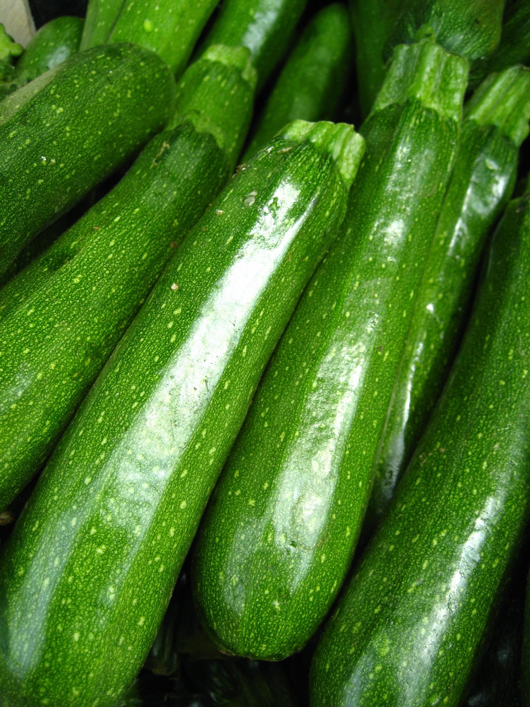 Zucchini toxin, Reactiile alergice nu sunt provocate de alergeni | Lupul Dacic