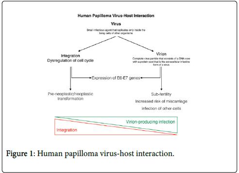 Recurrent respiratory papillomatosis hpv vaccine - Tumore ano da hpv
