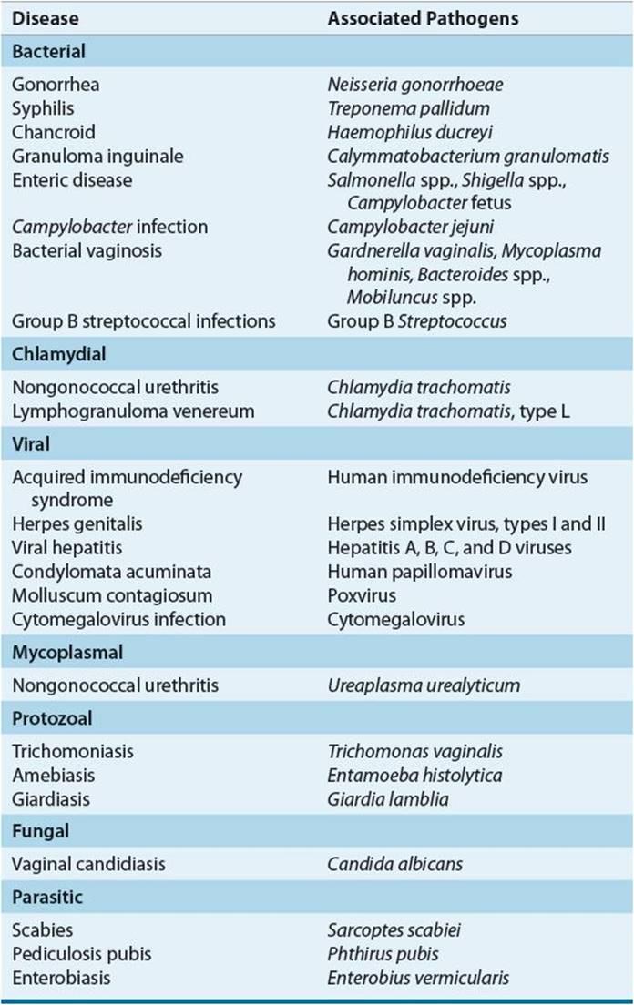 hpv chlamydia definition
