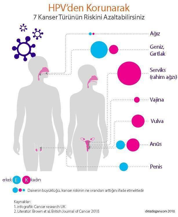 hpv tedavisi antibiyotik
