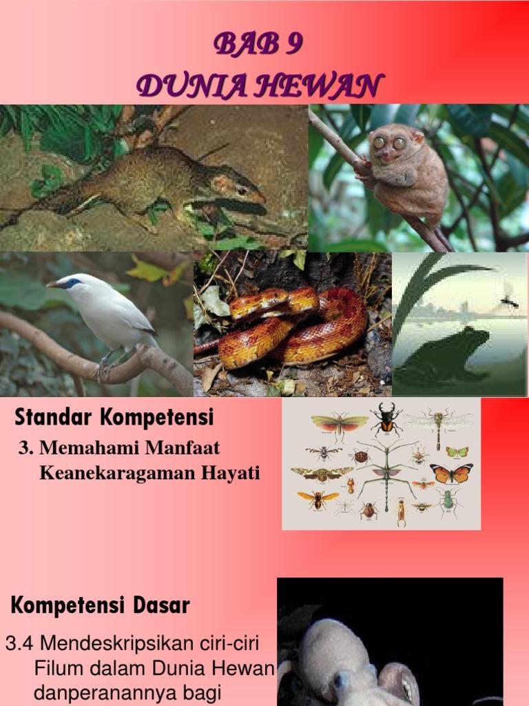 nemathelminthes dunia hewan