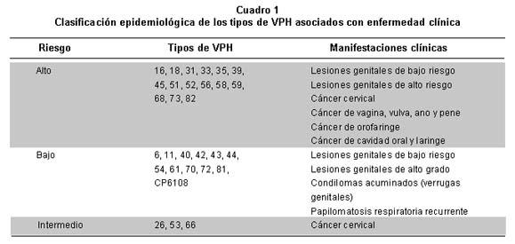 Virus de papiloma humano genotipo 16