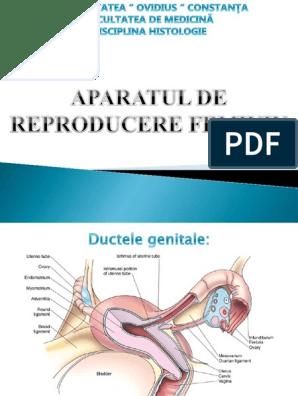 cancer aparat genital feminin msd vaccine human papillomavirus