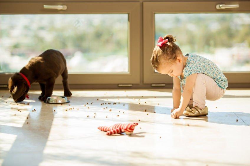Regula de 5 secunde a alimentelor scapate pe podea. Le mai consumi?