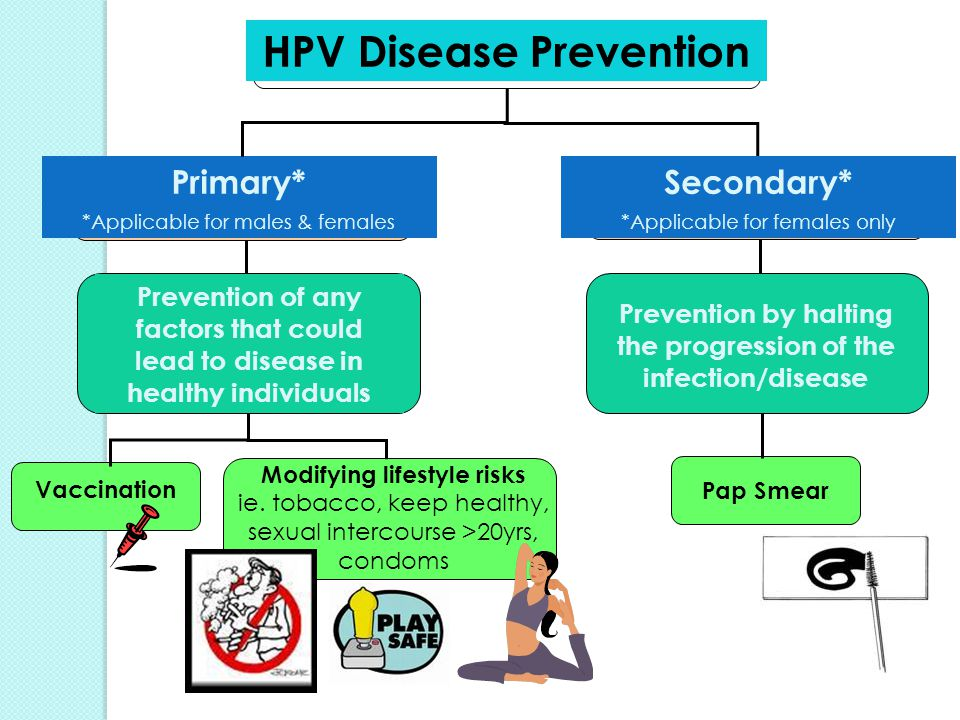 Publications & Data | European Centre for Disease Prevention and Control