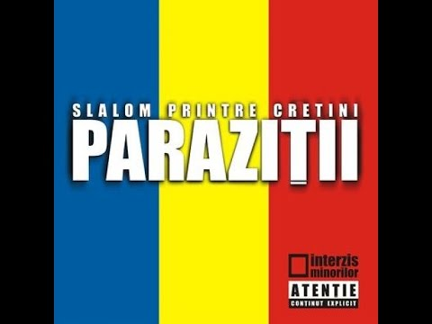Fara Resentimente (No Hard Feelings;Remix) - Parazitii | Shazam