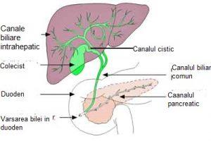 cancer cai biliare simptome