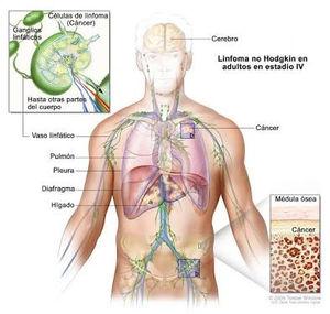nou în tratamentul helmintiazei
