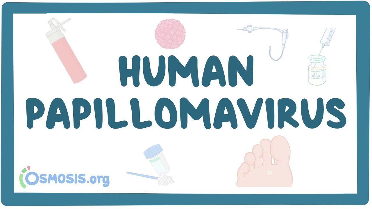 Human papillomavirus vaccine history