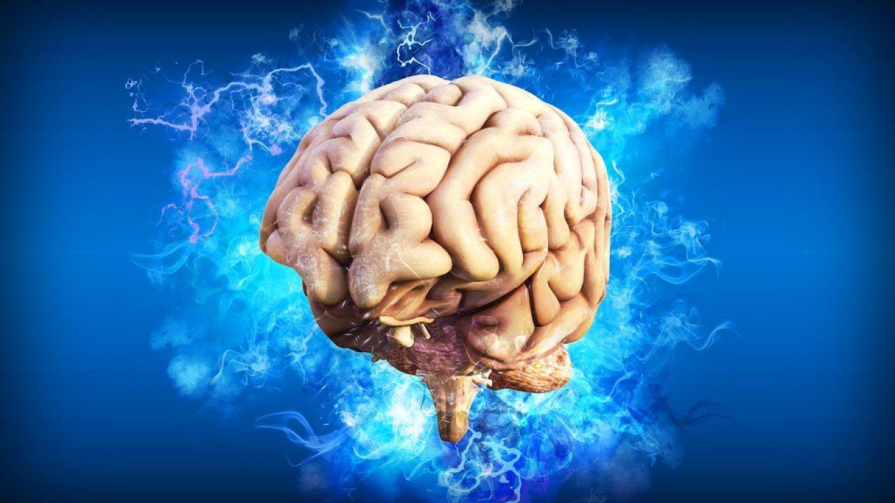 cum să scapi de viermi din creier