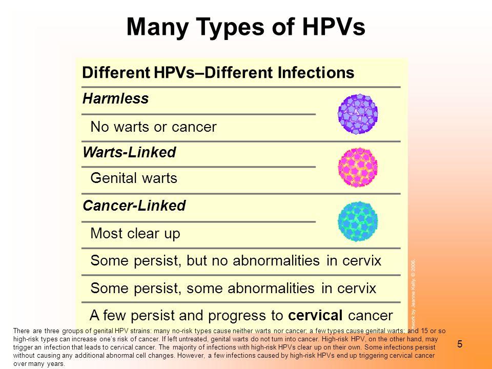 Hpv no warts still contagious.