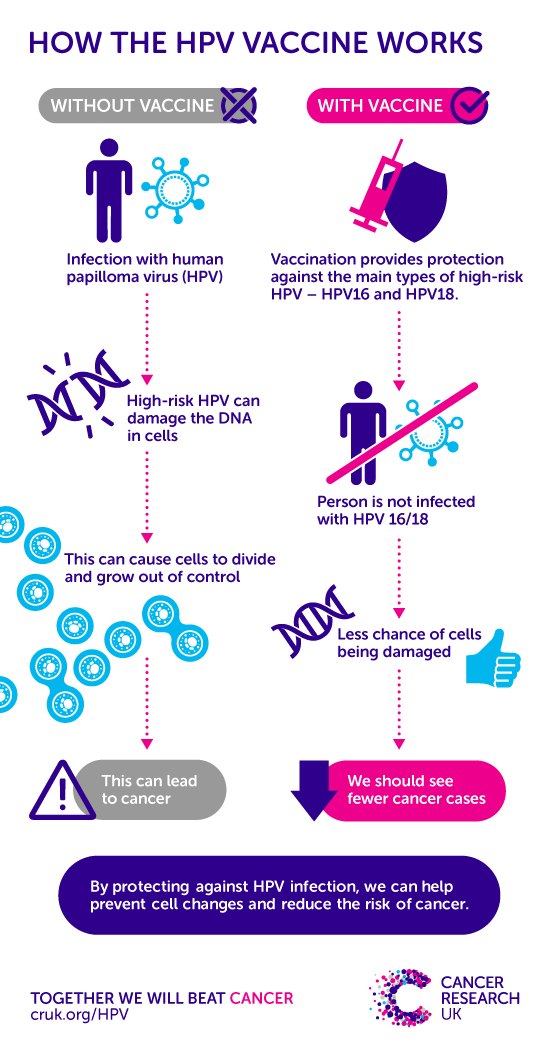 hpv cancer in male