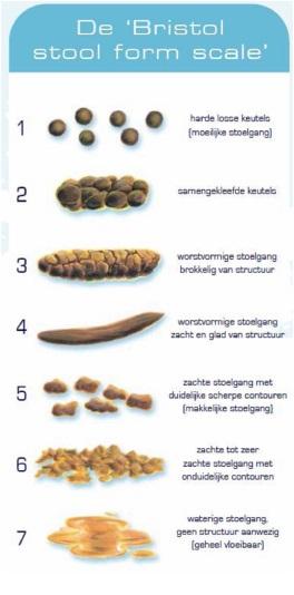 Eliminare paraziti intestinali, 7 remedii naturale contra parazitilor intestinali