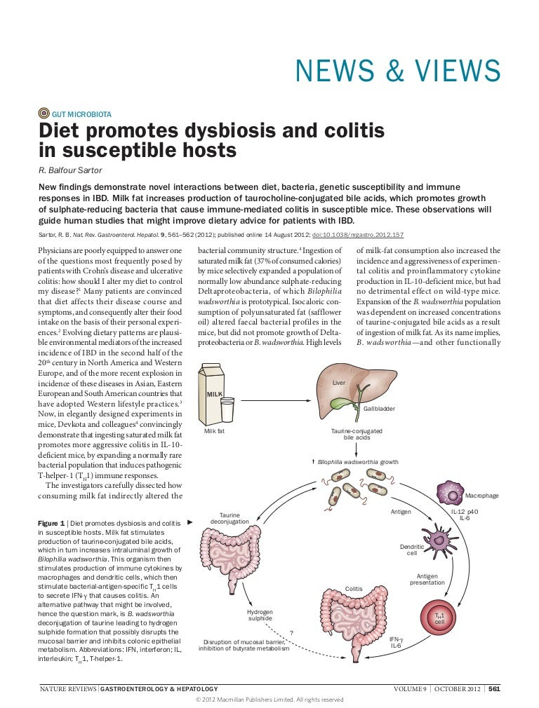 dysbiosis gastroenterologist