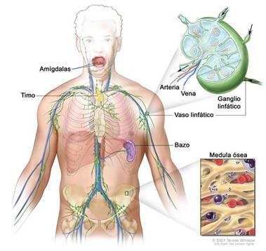 Cancer de hodgkin sintomas Warts on hands are contagious