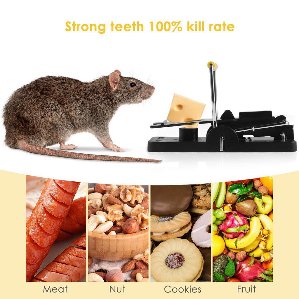 Șoarece de casă