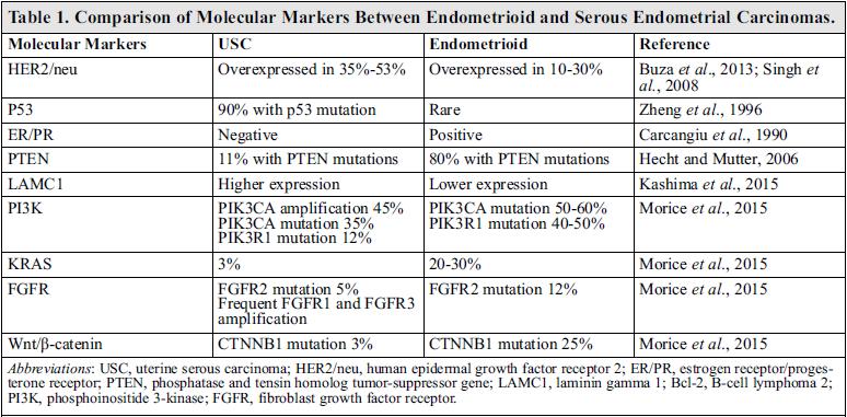 endometrial cancer marker