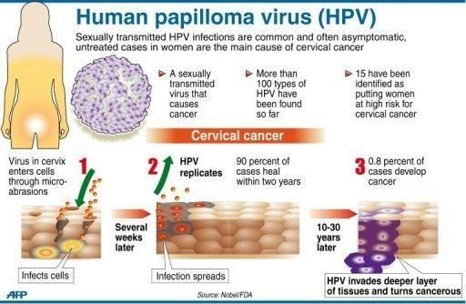 hpv virus cancer treatment)