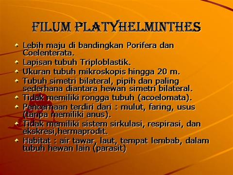 filum platyhelminthes ppt cancer of endocrine system