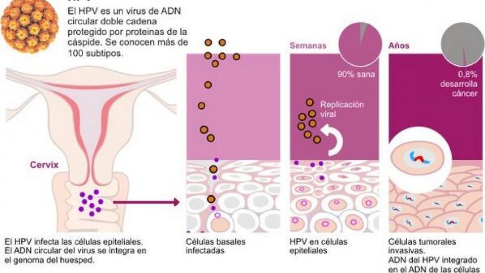 enterobius vermicularis prevencao simptomele diphildobothriasis la om și tratament