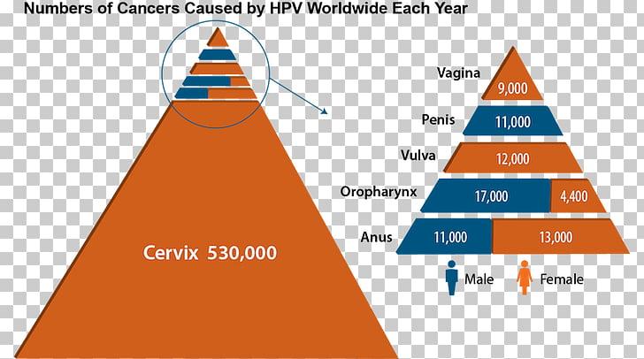 kako se leci hpv virus kod zena