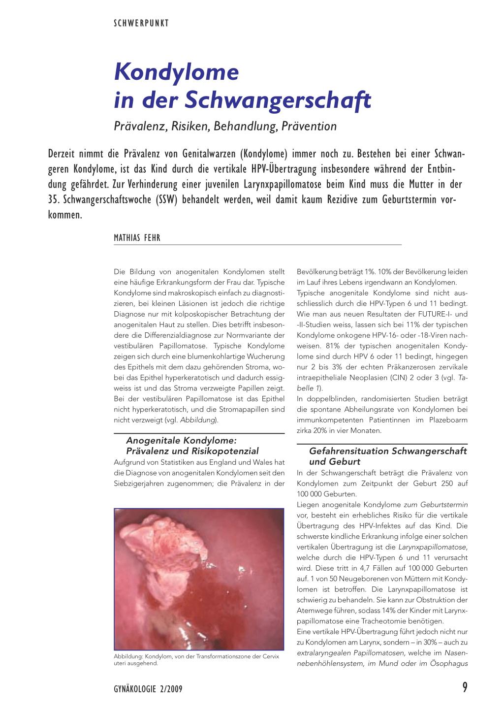 Hpv virus und schwanger werden, Traducere