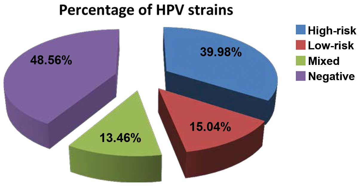 hpv wart strains