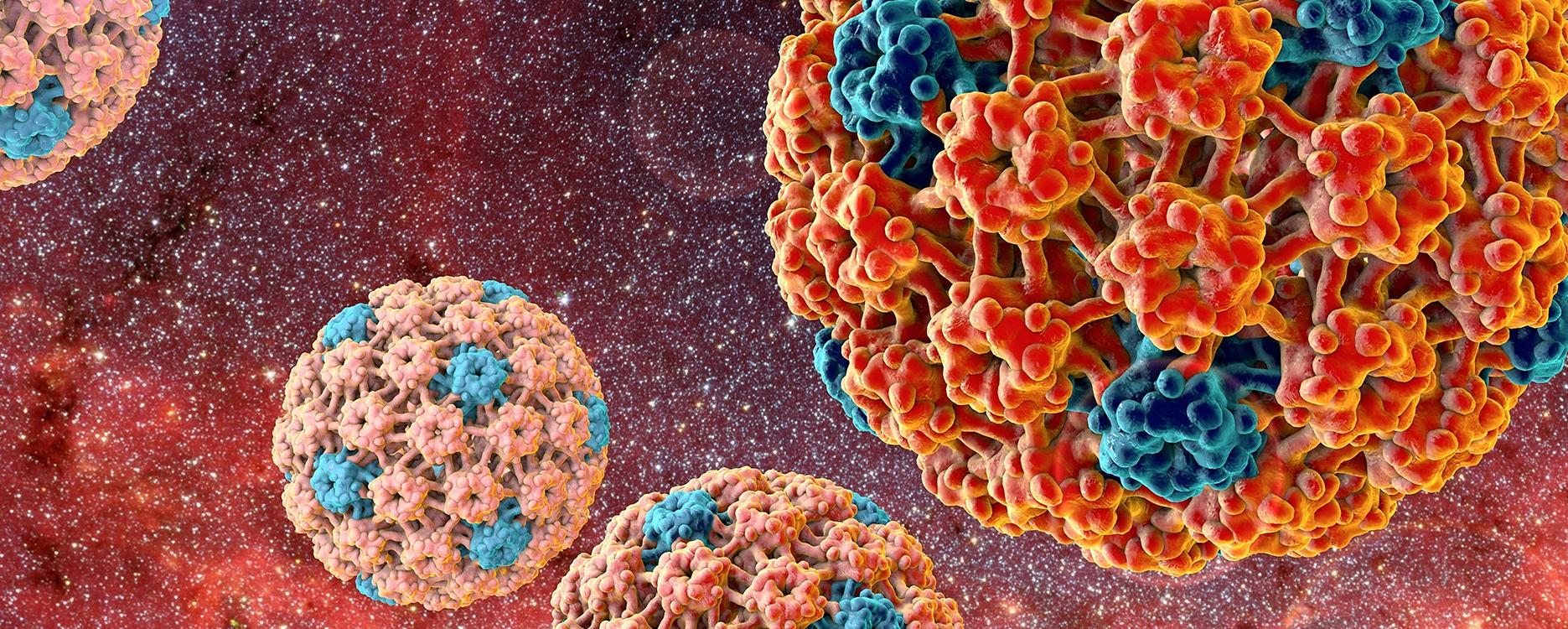 ist papillomavirus symptomes