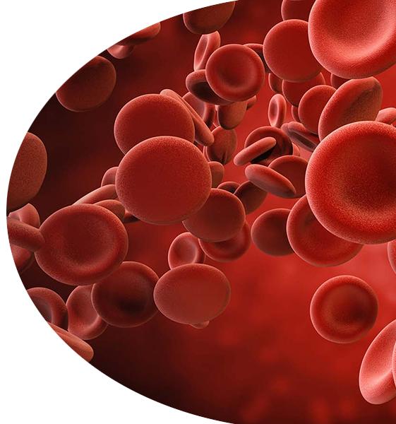 lehka anemie v tehotenstvi