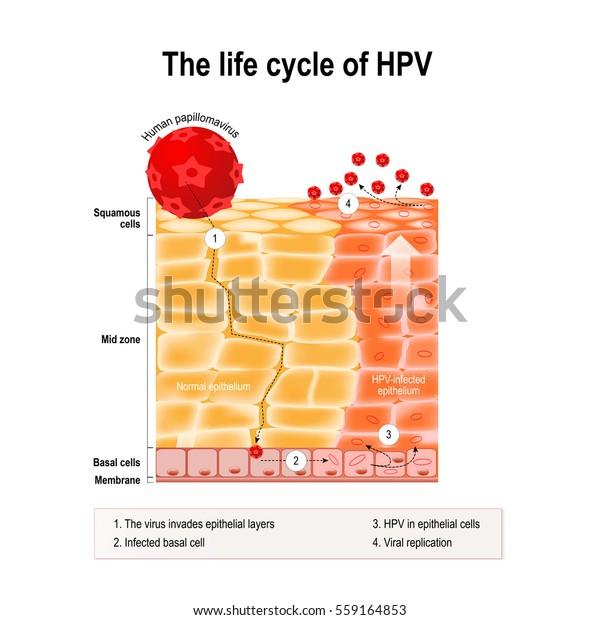 porque me salen oxiuros hpv vaccine side effects swollen lymph nodes