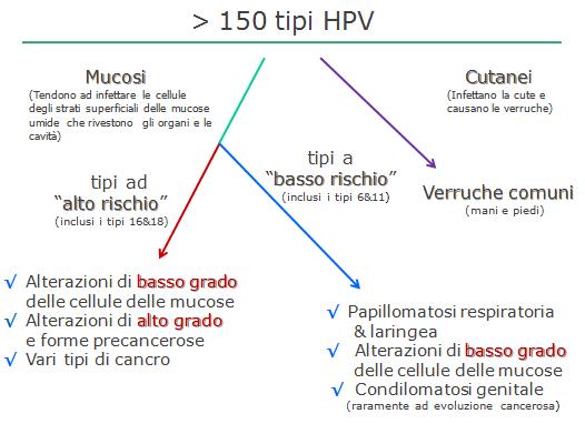 tableta anti vierme cu spectru larg hpv skin conditions