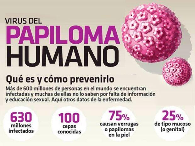 Papilloma virus ritardo ciclo. Enterobius vermicularis female