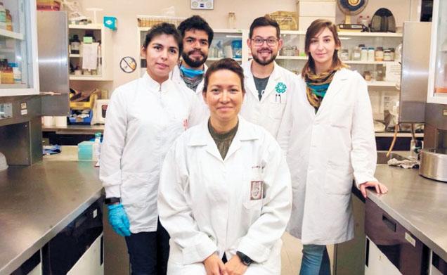 Prevenirea tumorilor de col uterin Terapia del papilloma virus