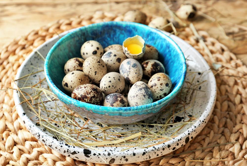 Ouăle de prepeliţă: beneficii terapeutice | Agenția de presă Rador