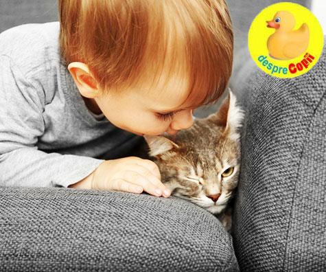 tratamentul enterobiazei la copii