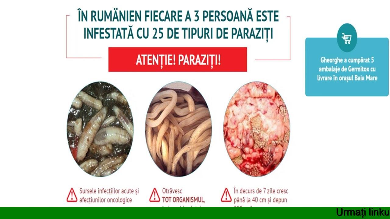 anthelmintic infection definition dacă se regenerează verucile genitale