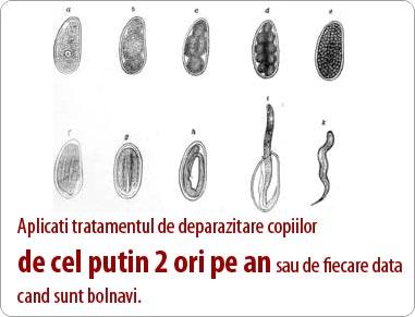 viermii de colon sunt paraziți